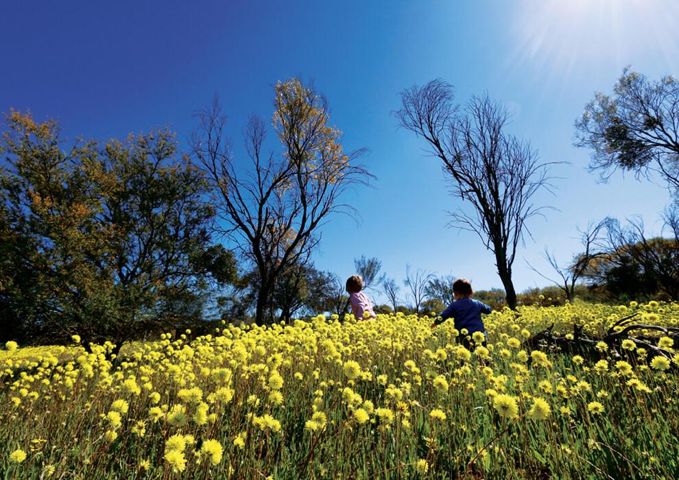 Mingenew two kids running in a field of wildflowers